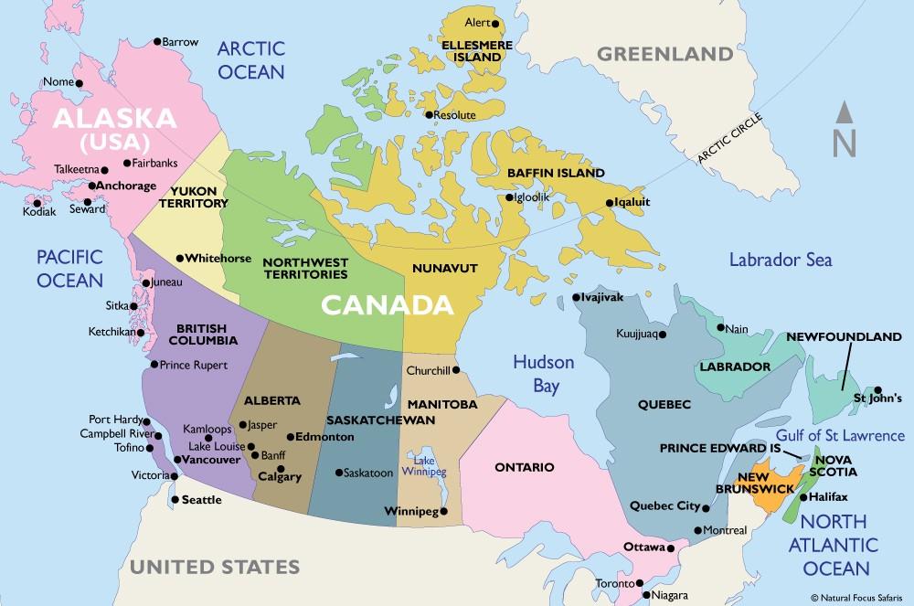 Nhiều học sinh chọn Canada du học, đâu là nguyên nhân?