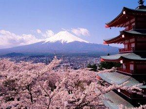 Tư vấn chọn trường du học Nhật Bản