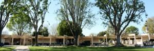 California - Trường Trung Học Công Lập  Birmingham Community Charter High School -  USA